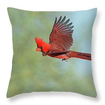Cardinal On A Mission Throw Pillow