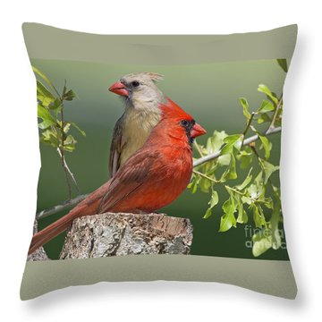 Cardinal Sentries Throw Pillow