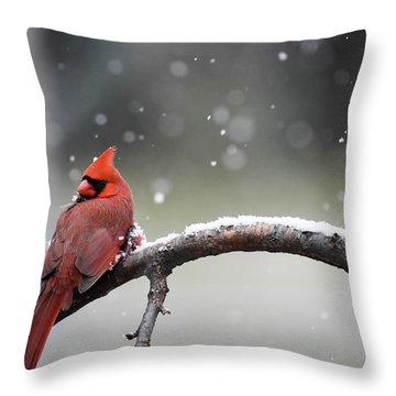 Cardinal Snowfall Throw Pillow
