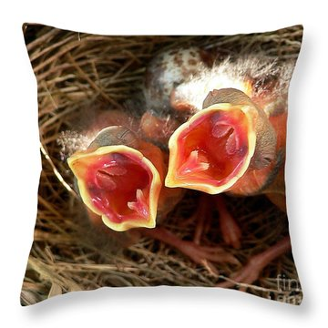Cardinal Twins - Open Wide Throw Pillow by Al Powell Photography USA