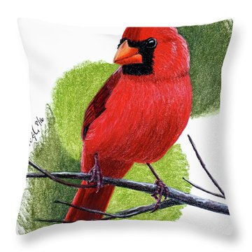 Throw Pillow featuring the painting Cardinal1 by Joseph Ogle