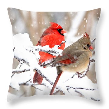Cardinals In The Winter Throw Pillow