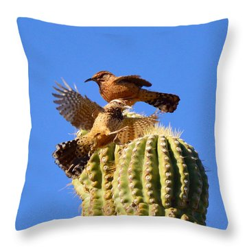 Throw Pillow featuring the photograph Careful Landing by Marilyn Smith