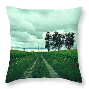 Caressing The Corn Path Throw Pillow