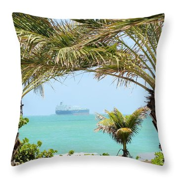 Cargo On Hold Throw Pillow