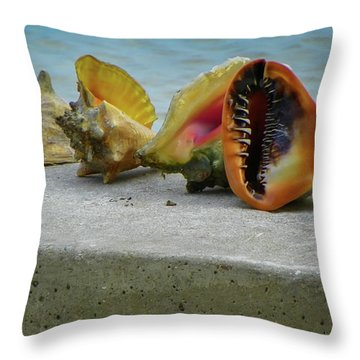 Caribbean Charisma Throw Pillow by Karen Wiles