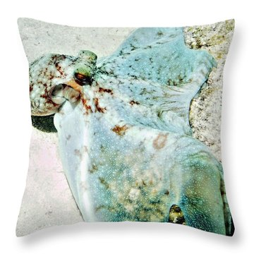 Caribbean Reef Octopus - Eyes Of The Deep Throw Pillow by Amy McDaniel