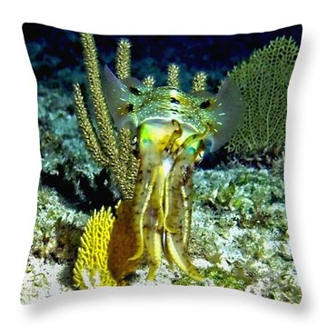 Caribbean Squid At Night - Alien Of The Deep Throw Pillow by Amy McDaniel