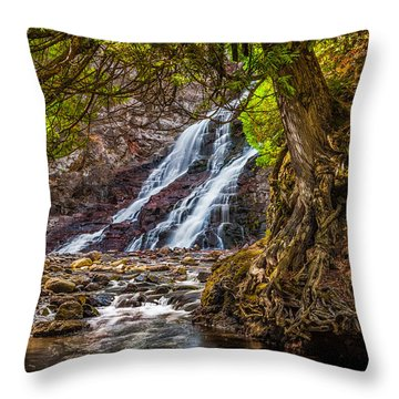 Caribou Falls In Fall Throw Pillow