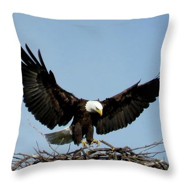 Cape Vincent Eagle Throw Pillow