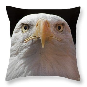 Carlisle Eagle Throw Pillow