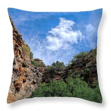 Throw Pillow featuring the photograph Carlsbad Caverns by Gina Savage