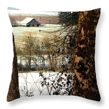 Carlton Barn Throw Pillow