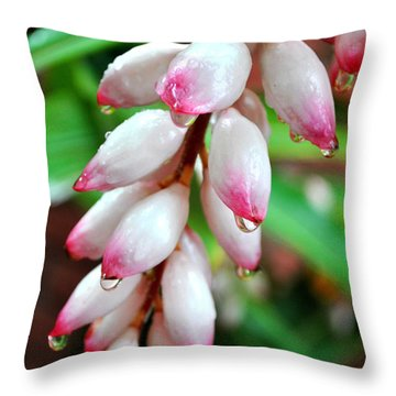 Throw Pillow featuring the photograph Carmellas Ginger And Raindrops by Kate Word
