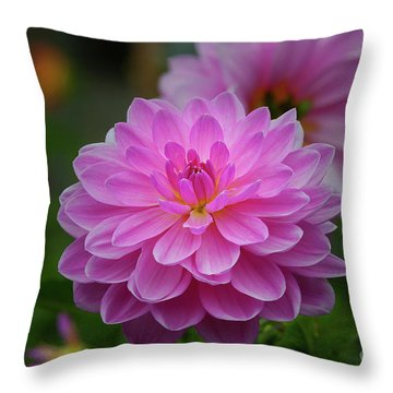Carmen Bunky 5 Throw Pillow