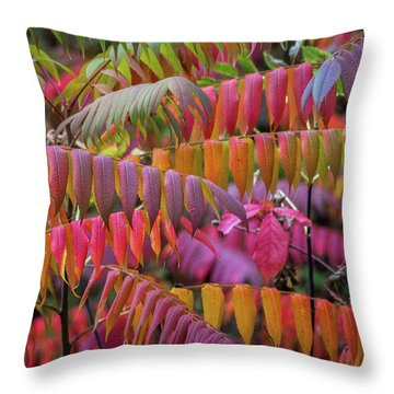 Throw Pillow featuring the photograph Carnival Of Autumn Color by Bill Pevlor