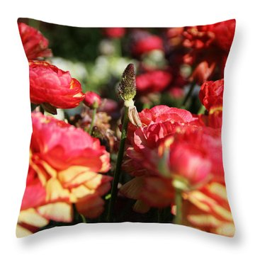 Carnival Of Flowers 04 Throw Pillow