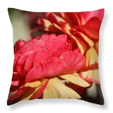 Carnival Of Flowers 05 Throw Pillow