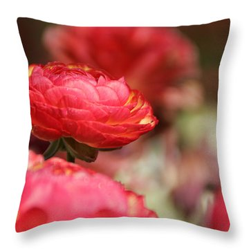 Carnival Of Flowers 06 Throw Pillow