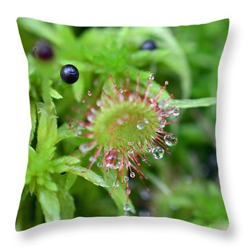 Carnivorous Sundew Throw Pillow