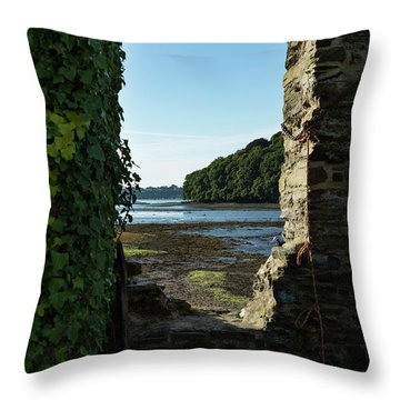 Throw Pillow featuring the photograph Photographs Of Cornwall Carnon Mine Window by Brian Roscorla