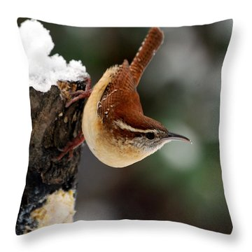 Carolina At The Suet Post Throw Pillow