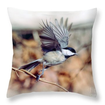 Carolina Chickadee - Come Fly With Me  Throw Pillow