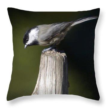 Carolina Chickadee Throw Pillow