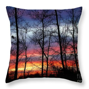 Throw Pillow featuring the photograph Carolina Sunset by Sue Melvin