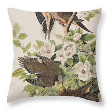 Carolina Turtle Dove Throw Pillow by John James Audubon