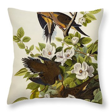 Carolina Turtledove Throw Pillow by John James Audubon