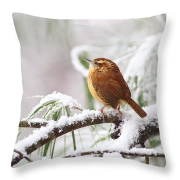 Carolina Wren In Snowy Pine Throw Pillow