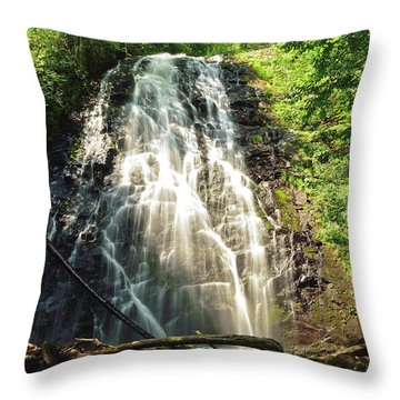 Carolina's Crabtree Falls Throw Pillow