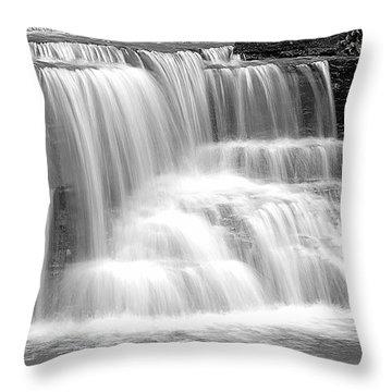 Caron Falls Throw Pillow