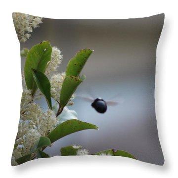 Carpenter Bee In Flight Throw Pillow by Colleen Cornelius