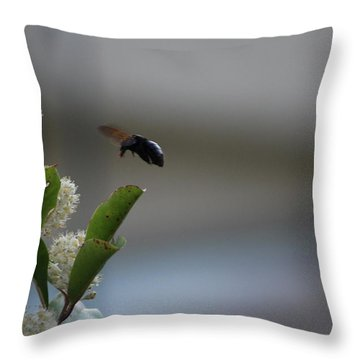 Carpenter Bee Landing Throw Pillow by Colleen Cornelius