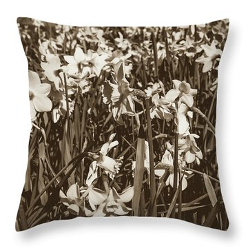 Throw Pillow featuring the photograph Carpet Of Daffodils by Jacek Wojnarowski