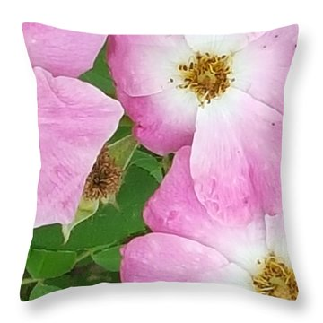 Carpet Of Pink Throw Pillow
