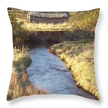 Carr Homestead Throw Pillow