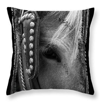 Carriage Horse B And W Throw Pillow