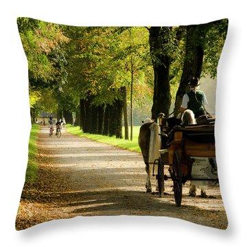 Carriage Ride In Hellbrunn Throw Pillow