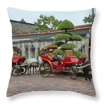 Carriage Rides Throw Pillow
