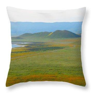Carrizo Beauty Throw Pillow