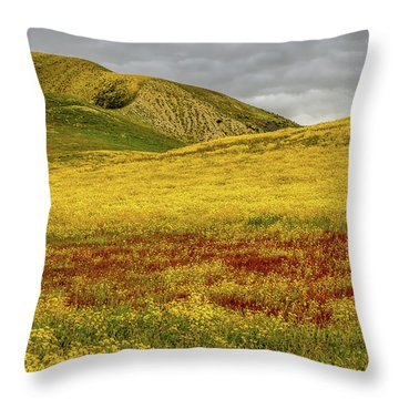 Throw Pillow featuring the photograph Carrizo  Plain Super Bloom 2017 by Peter Tellone