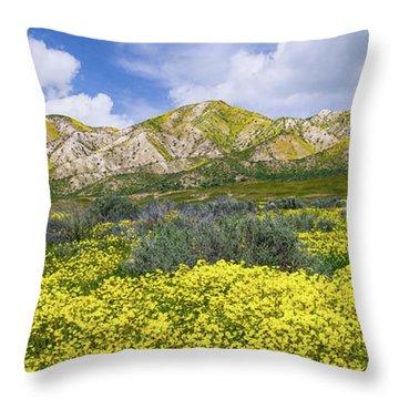 Carrizo Spring Throw Pillow