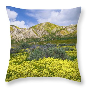 Carrizo Spring Throw Pillow by Bjorn Burton