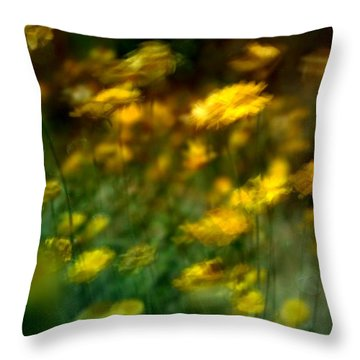Carry Throw Pillow