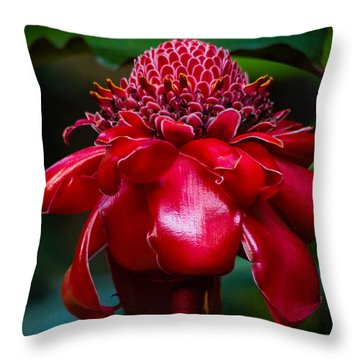 Carrying A Torch Throw Pillow