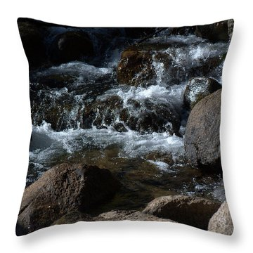 Carson River Throw Pillow by Lynn Bawden