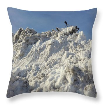 Throw Pillow featuring the photograph Cart Art No. 31 by Keith McGill